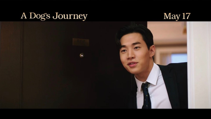 A Dog's Journey (2019) 영화 예고편 - Official Movie Trailer with Henry (헨리)