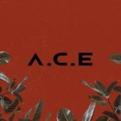 A.C.E (에이스)