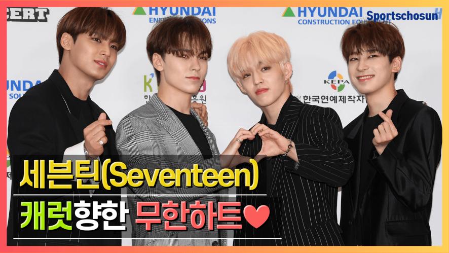 세븐틴(Seventeen), 캐럿향한 세봉이들의 무한하트♥ (2019 DREAMCONCERT)