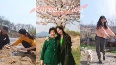 THE ULTIMATE LOCAL KOREAN VLOG | KOREA COUNTRY LIFE | FAIRY TINA