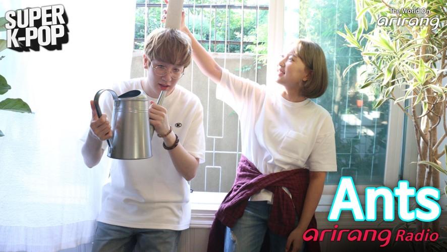 Arirang Radio (Super K-Pop / Ants)