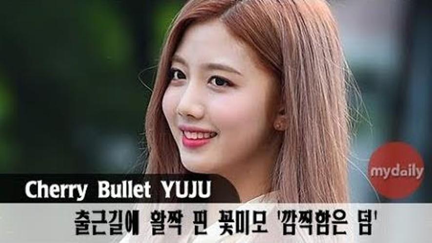 [체리블렛:Cherry Bullet] '꽃미모가 활짝 피었습니다'