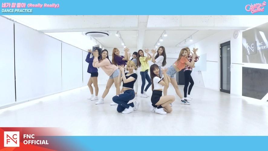 체리블렛 (Cherry Bullet) – '네가 참 좋아 (Really Really)' DANCE PRACTICE