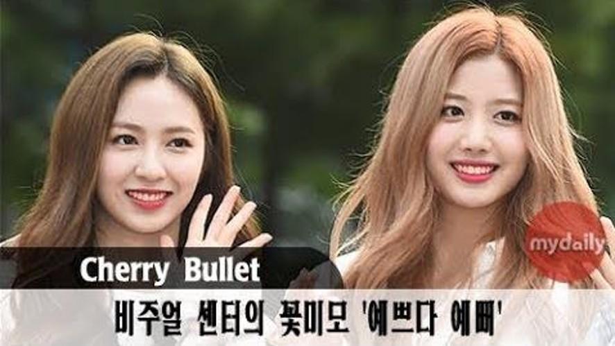 [체리블렛:Cherry Bullet] '체리보다 더 상큼해'