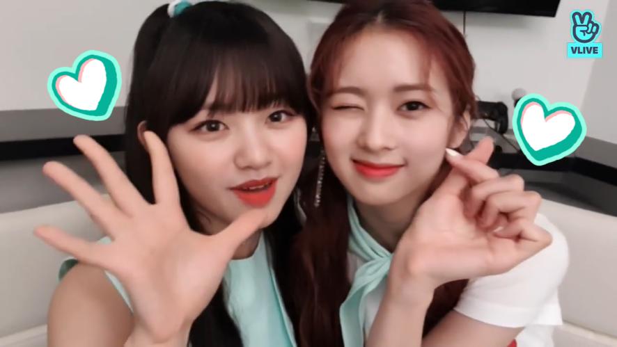 [Cherry Bullet] 이만한 수박과 이만한 숟가락으로 이만큼 귀엽게 와아앙🍉💘 (KOKORO&MAY talking about watermelon)