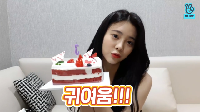 [DIA] 울응채 세살 네살 아니 호호백발 되어서도 우리랑 같이 초 부는거야🎂💓 (EUNCHAE's debut 3rd anniversary)