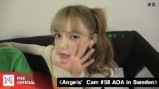 Angels' Cam #58 : AOA in Sweden