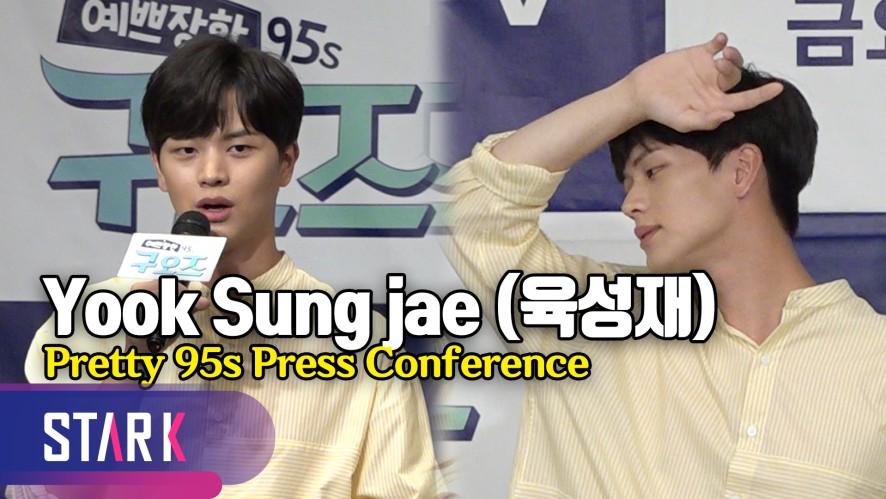 비투비 육성재, 육잘또의 마초 매력! (Yook Sung jae, Pretty 95s Press Conference)