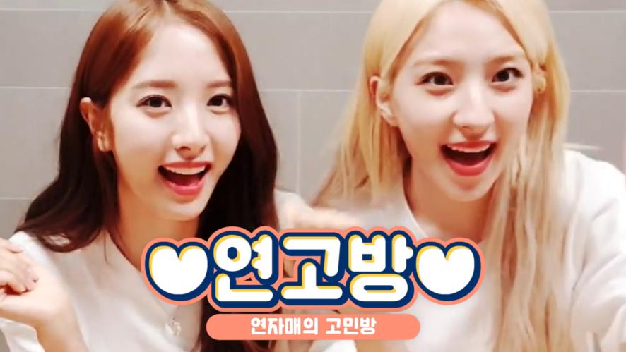 [WJSN] 👥: 언니들이 너무 좋아서 고민이에요 💘: 굳이 해결해주고싶지않네요(ノ◕ヮ◕)ノ*:・゚✧ (Returned Yeon sisters' counseling)