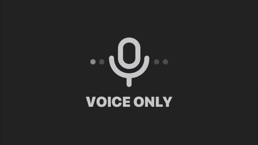 This is VOICE ONLY...