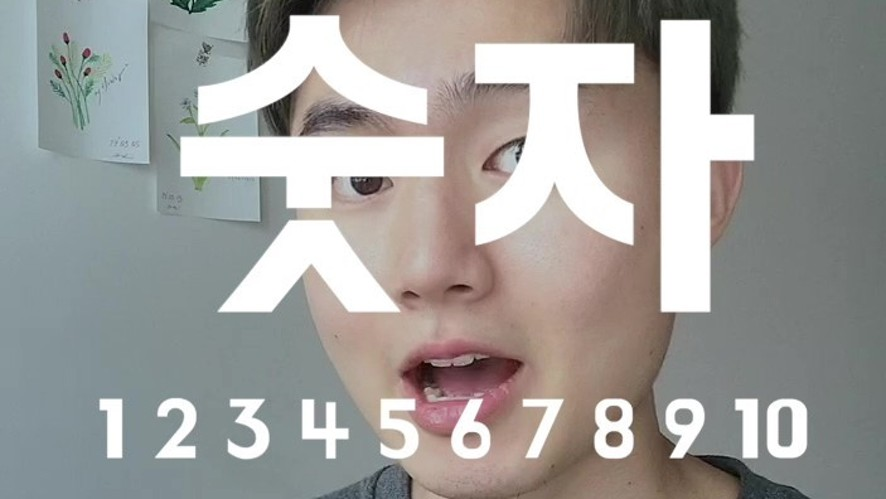 Ryan's Basic Korean Expression : numbers