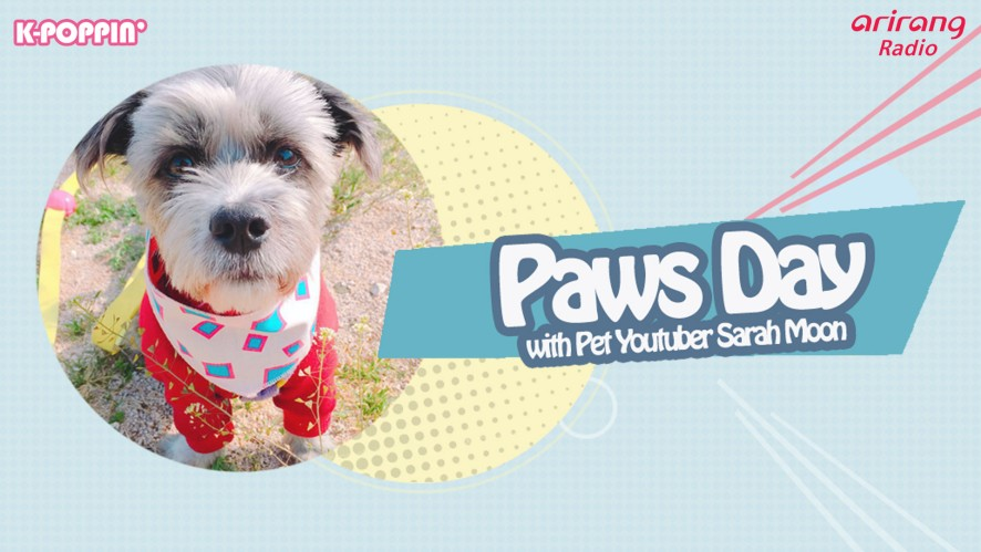 Paws Day with Pet Youtuber Sarah Moon