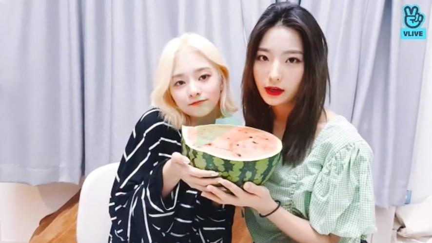 Watermelon unboxing 🍉