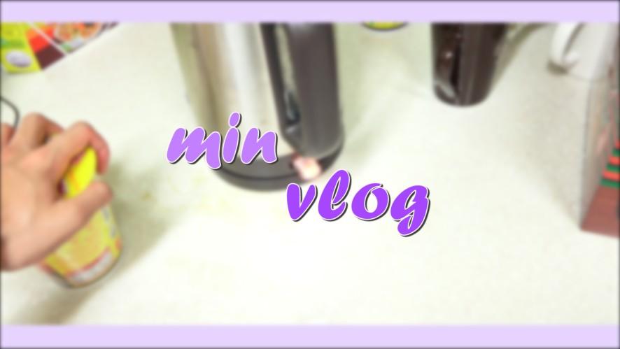 WE IN THE ZONE (위인더존) _ MIN Vlog