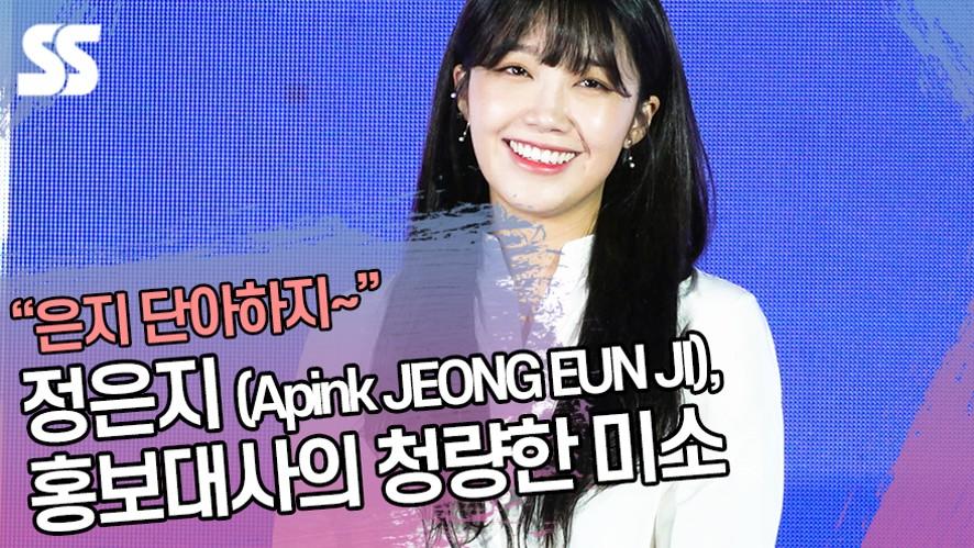 에이핑크 정은지 (Apink JEONG EUN JI), 홍보대사의 청량한 미소