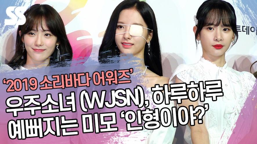 우주소녀 (WJSN), 하루하루 예뻐지는 미모 '인형이야?' ('2019 소리바다 어워즈')