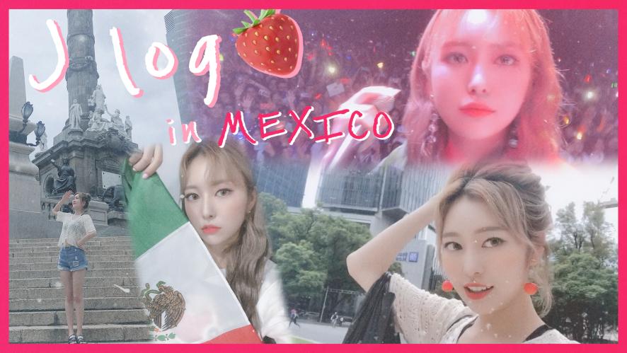 [VLOG] J-log EP. 4 멕시코 브이로그라고 쓰고 먹방로그라고 읽는다. J-log in MEXICO, mukbang&backstage