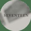 SEVENTEEN+