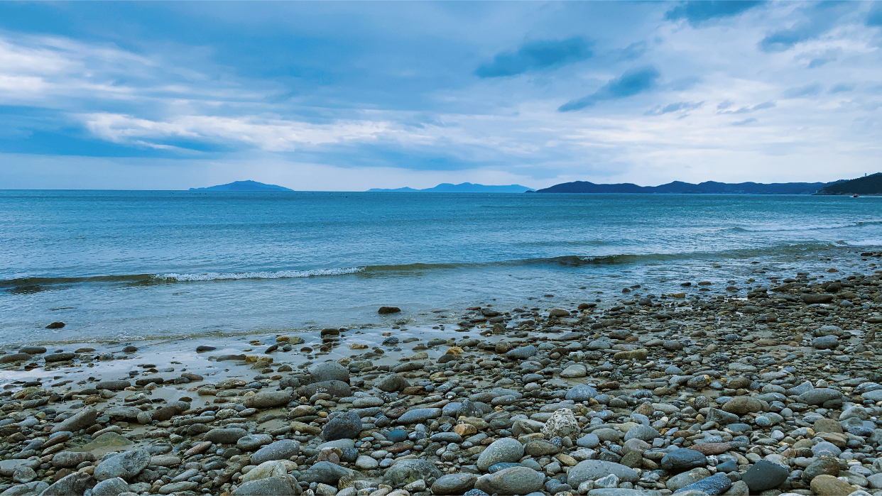 선선율의 바닷가 브이앱🦀