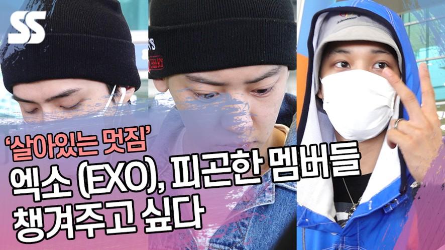 엑소 (EXO), 피곤한 멤버들 챙겨주고 싶다 (인천공항)