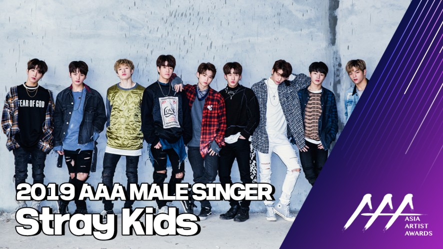 ★2019 Asia Artist Awards (2019 AAA) Stray Kids★