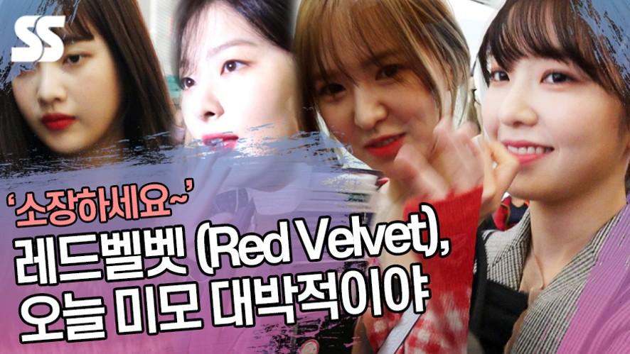 레드벨벳 (Red Velvet), 오늘 미모 대박적이야 (인천공항)