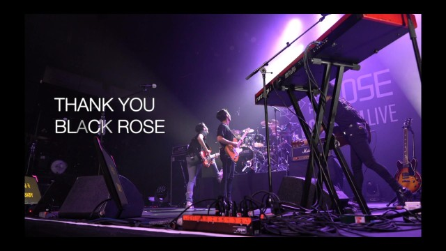 "2019 The Rose ""WE ROSE YOU LIVE"" USA TOUR Behind"