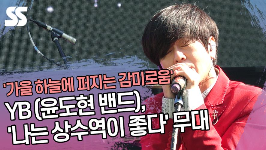 YB(윤도현 밴드), '나는 상수역이 좋다' 무대 '가을 하늘에 퍼지는 감미로움' ('Twilight State'