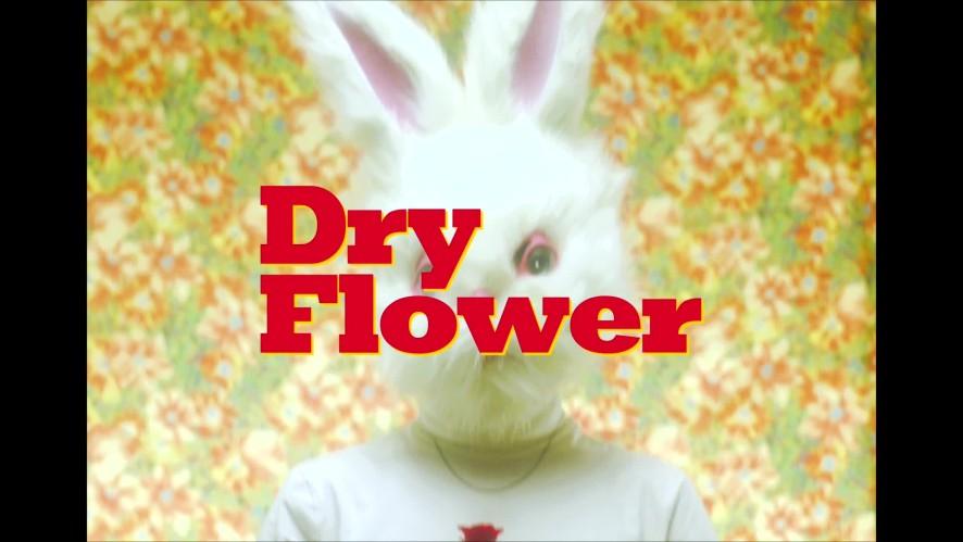 SURL (설) - Dry Flower TEASER