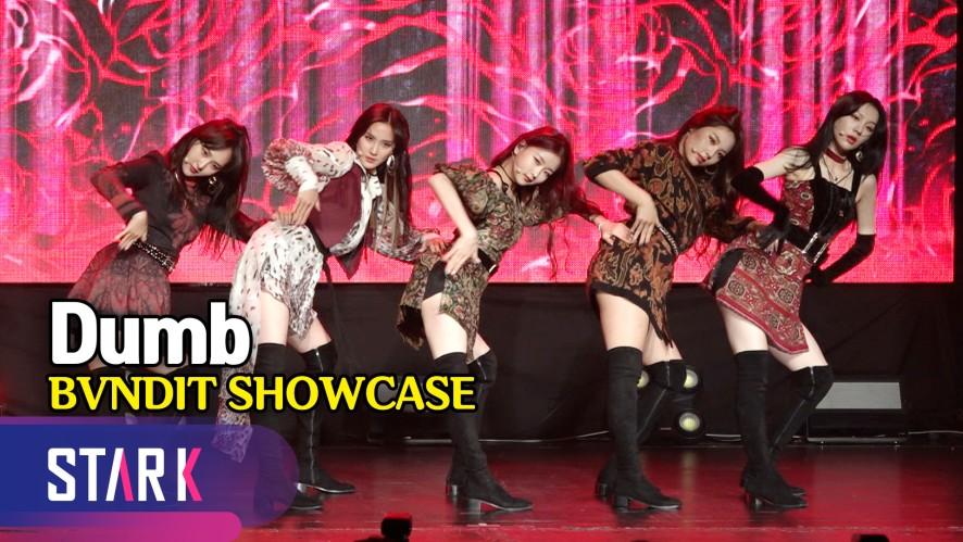밴디트, 열정 넘치는 라틴 팝! 'Dumb' 무대 (Title song 'Dumb', BVNDIT SHOWCASE)