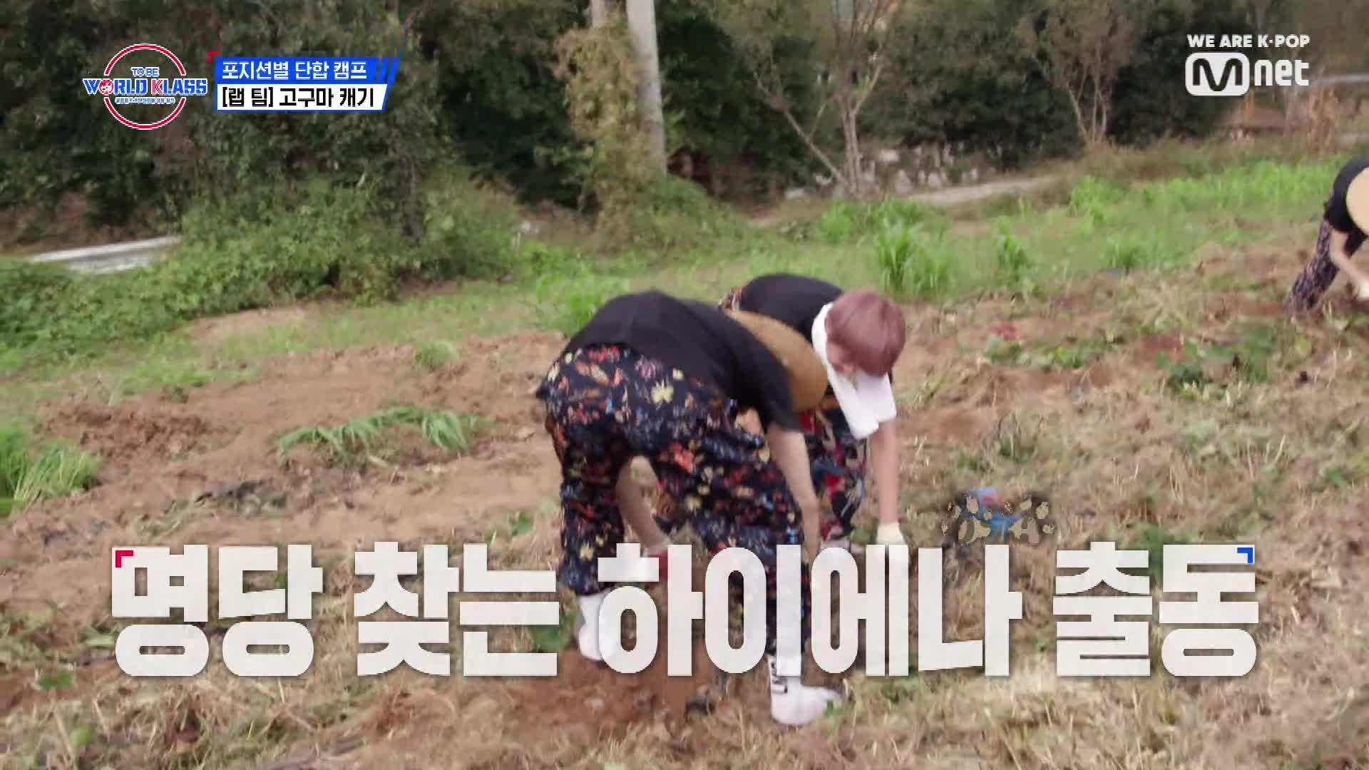 [6회] 'Go구마로 Flex' 밭두렁 SWAG 뽐내는 랩 팀의 고구마 캐기