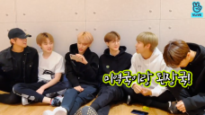 [NCT] 📣케이팝 최초📣 엄청난 혼혈 아이돌 탄생 (NCT DREAM talking about fanchant)