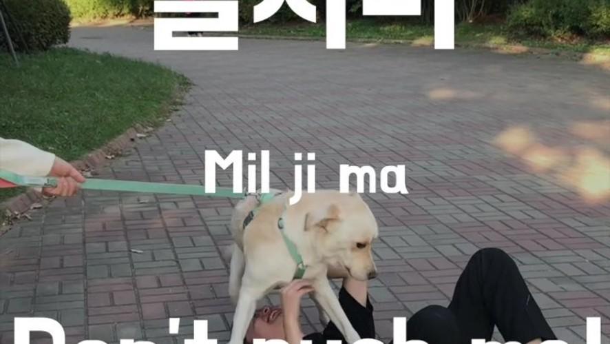 Ryan's Basic Korean Expression: Don't push me
