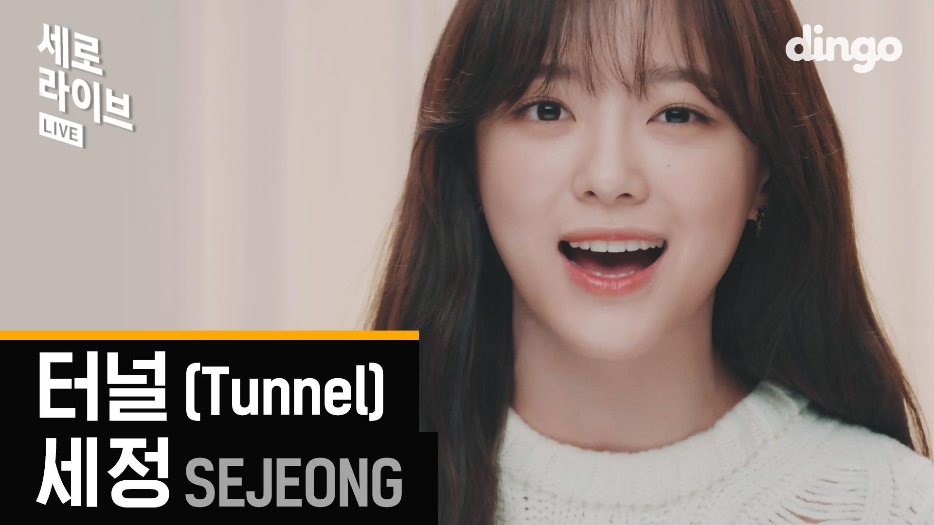 꽉 막힌 하루 끝에서 널 기다릴게 | 세정(SEJEONG) - 터널 | SERO LIVE | Tunnel | dingomusic