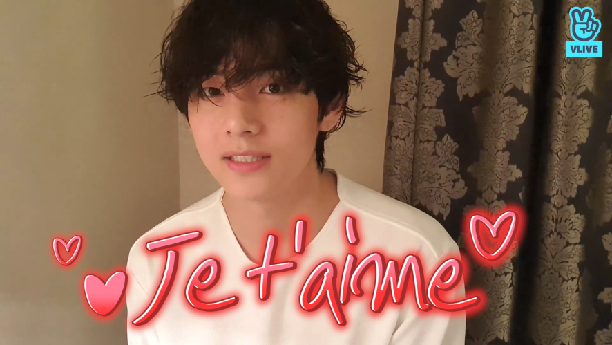 [BTS] With Human Louvre's Cuteness and Handsomeness, Je T'aime..💜( ゚இ‸இ゚+)゚。