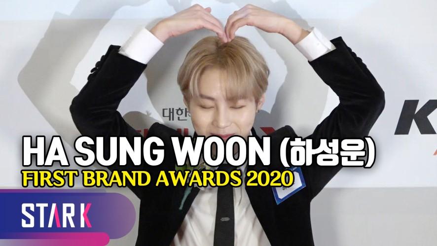 하성운, 거부할 수 없는 구르미 하트♡ (HA SUNG WOON, FIRST BRAND AWARDS 2020)