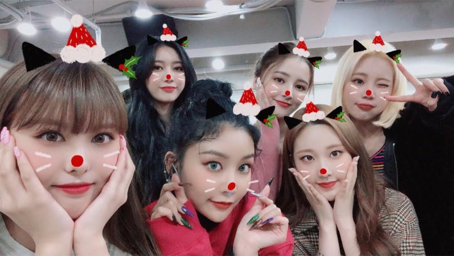 🎄 Merry! Merry Merry Christmas ❤️❤️❤️