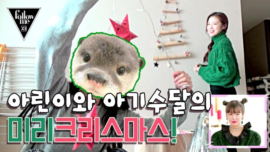 오마이걸 숙소에 찾아 온 아기 수달(?)과 크리스마스! (ft.아린) <팔로우미12>