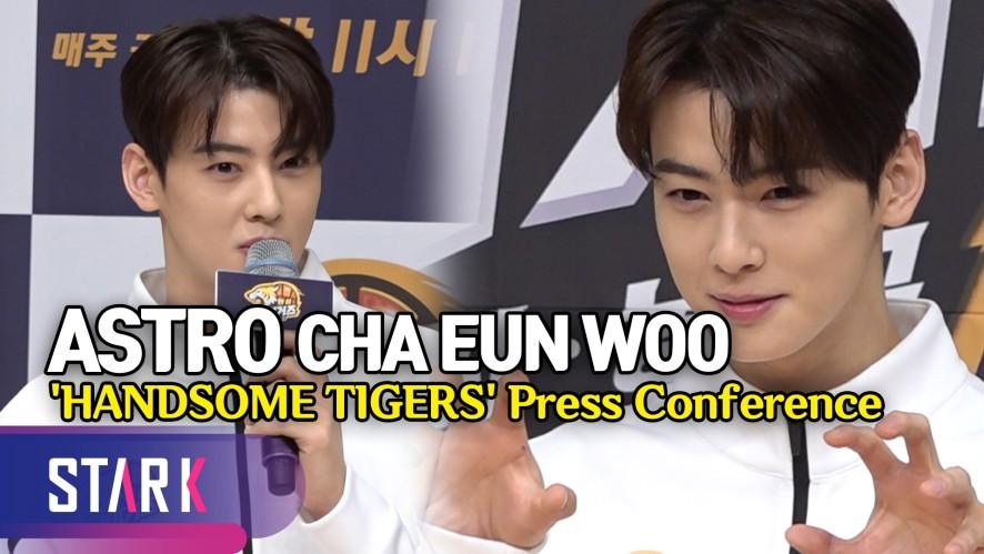 '핸섬타이거즈' 차은우, 얼굴 천재·농구 천재 사기 캐릭터 (CHA EUN WOO, 'HANDSOME TIGERS' Press Conference)
