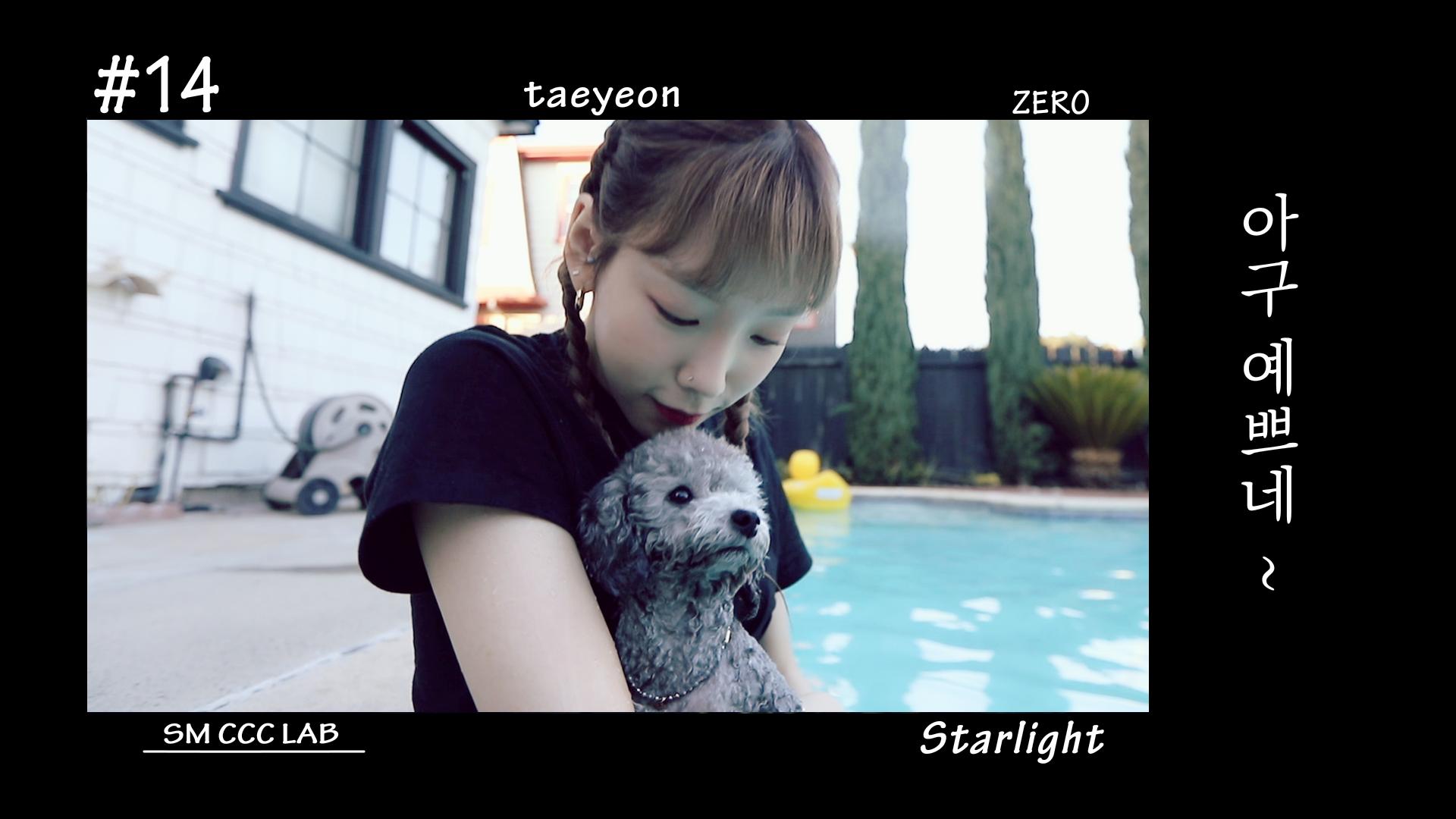 [펫셔니스타 탱구┃Petionista Taengoo]  EP. 14  아구 예쁘네~  (Starlight)