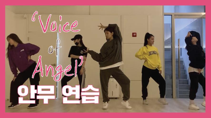 [박신혜] 2019 박신혜 팬미팅 'Voice of Angel' 안무 연습 영상 공개