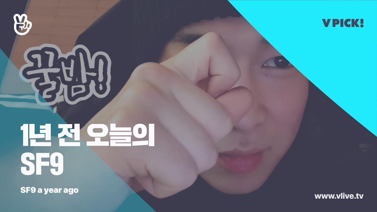 [1년 전 오늘의 SF9] 가족을 늘립시다‼️ 우리 섹귀의 초특급선물 밤주먹🌰을 위해서라도‼️ (Dawon's onthewayhome a year ago)