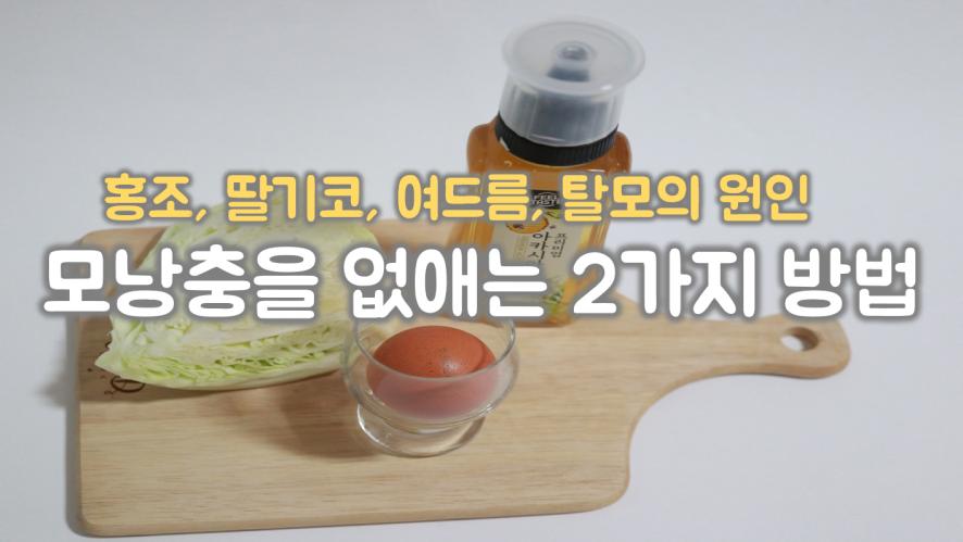 모낭충제거하는 2가지 방법! 얼굴모낭충제거하고 꿀피부 되보자! (ONLY 자막)