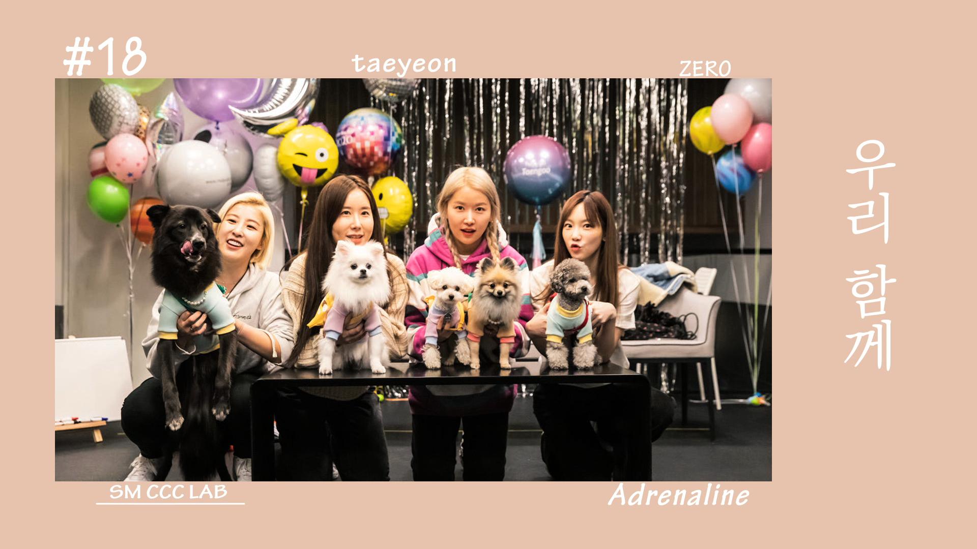 [펫셔니스타 탱구┃Petionista Taengoo]  EP. 18  우리 함께 (Adrenaline)