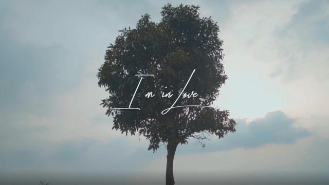 Reza Darmawangsa - I'm in Love