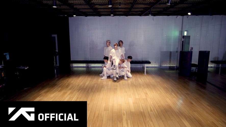 iKON - 'Dive' Dance Practice Video