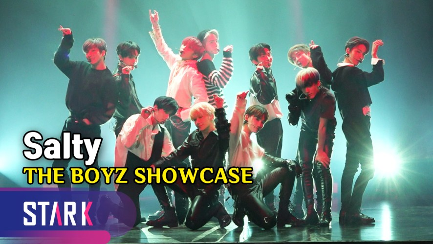 소년들의 부드러움! 더보이즈 'Salty' (Sub Song 'Salty', THE BOYZ SHOWCASE)