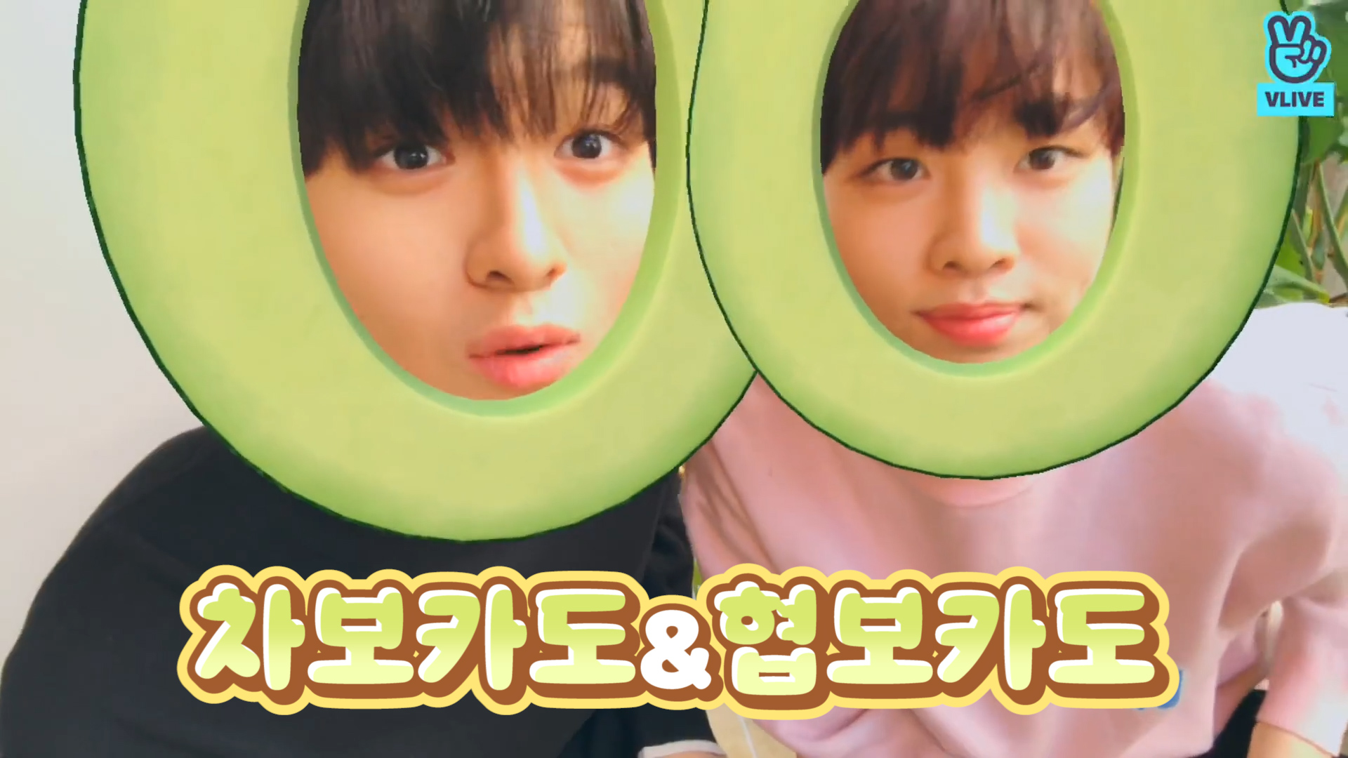 [Woollim Rookie] 🏆귀여운 과일 1위 차보카도&협보카도 나가신다!!🥑 (JUNHO&HYEOP playing with filters)