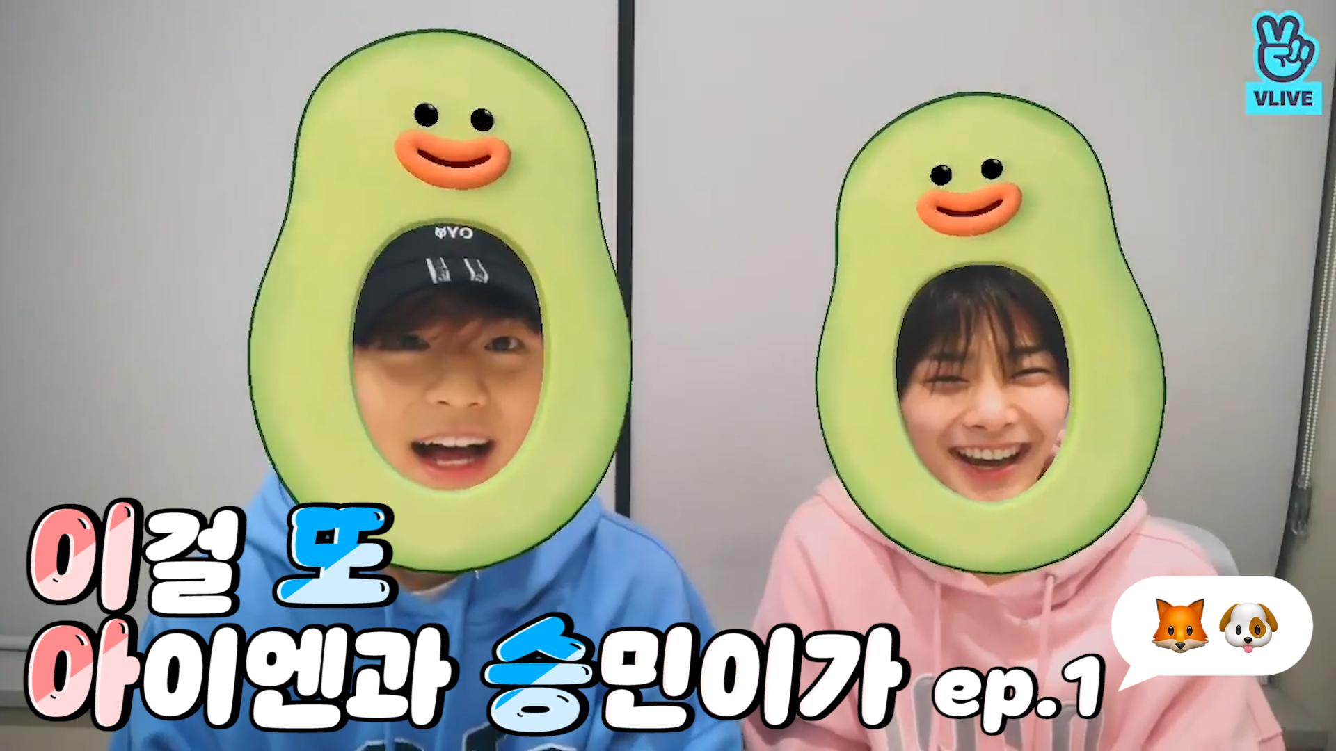 [Stray Kids] 초딩들 맞잖아요~ (초)단위로 머리가 (딩)하게 귀여워🦊🐶 (SEUNGMIN&I.N playing with a hoodie)