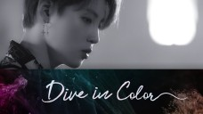 'Dive in Color' Opening VCR